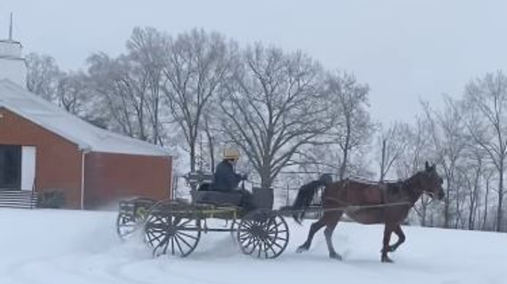 amish buggy in the snow tanner and shelby malone 1.JPG