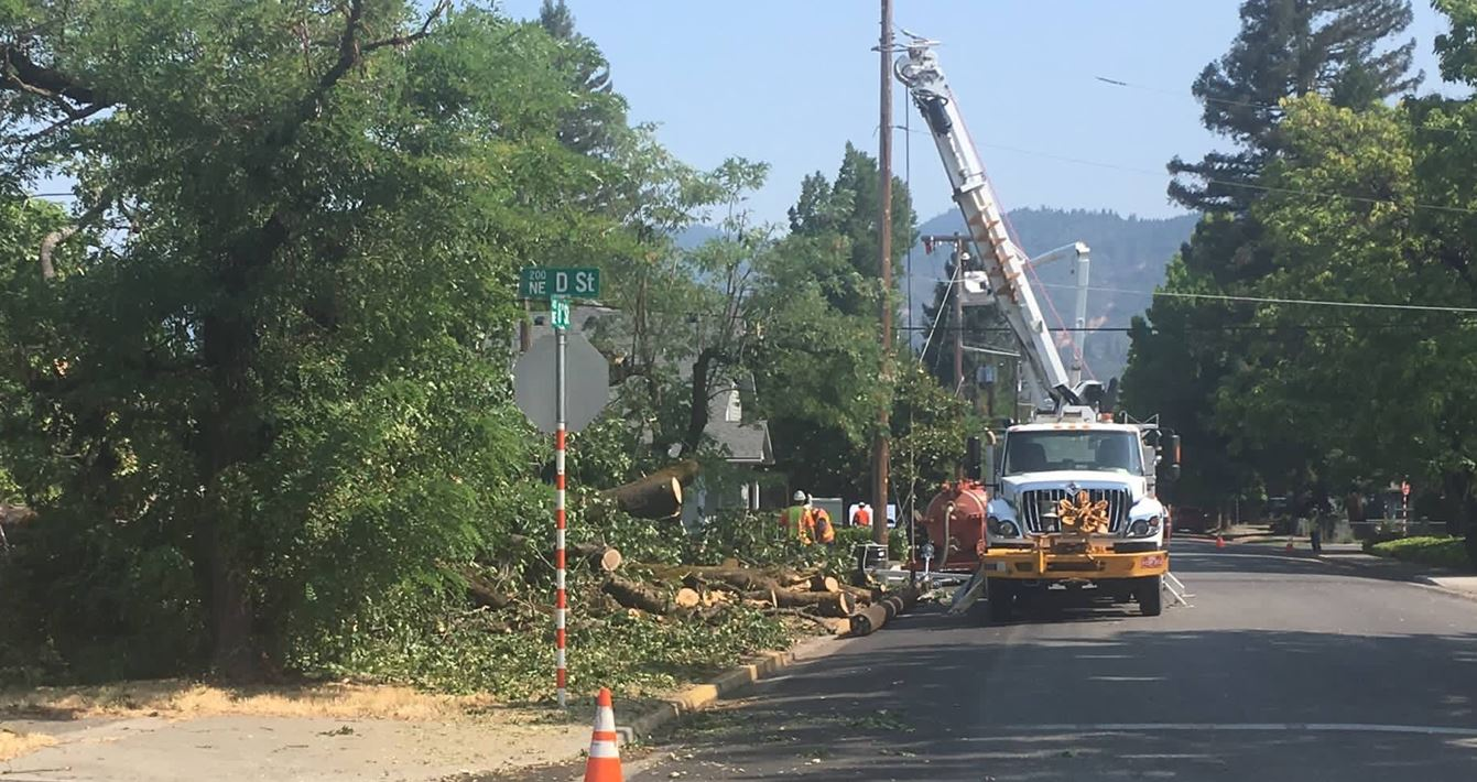 Down power lines cause power outage for more than 200 customers in Grants Pass. (Simone Braithwaite/KTVL)