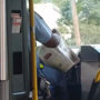 Metrobus driver under fire after tweet shows him reading paper while driving