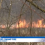 Wind fueled brush fire at a swamp in Pavilion Township