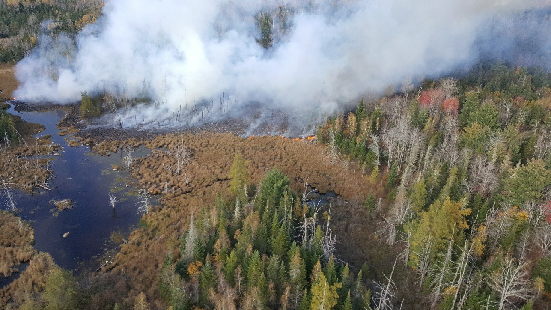 Wildfire in Hancock County (courtesy of Maine Forest Rangers)