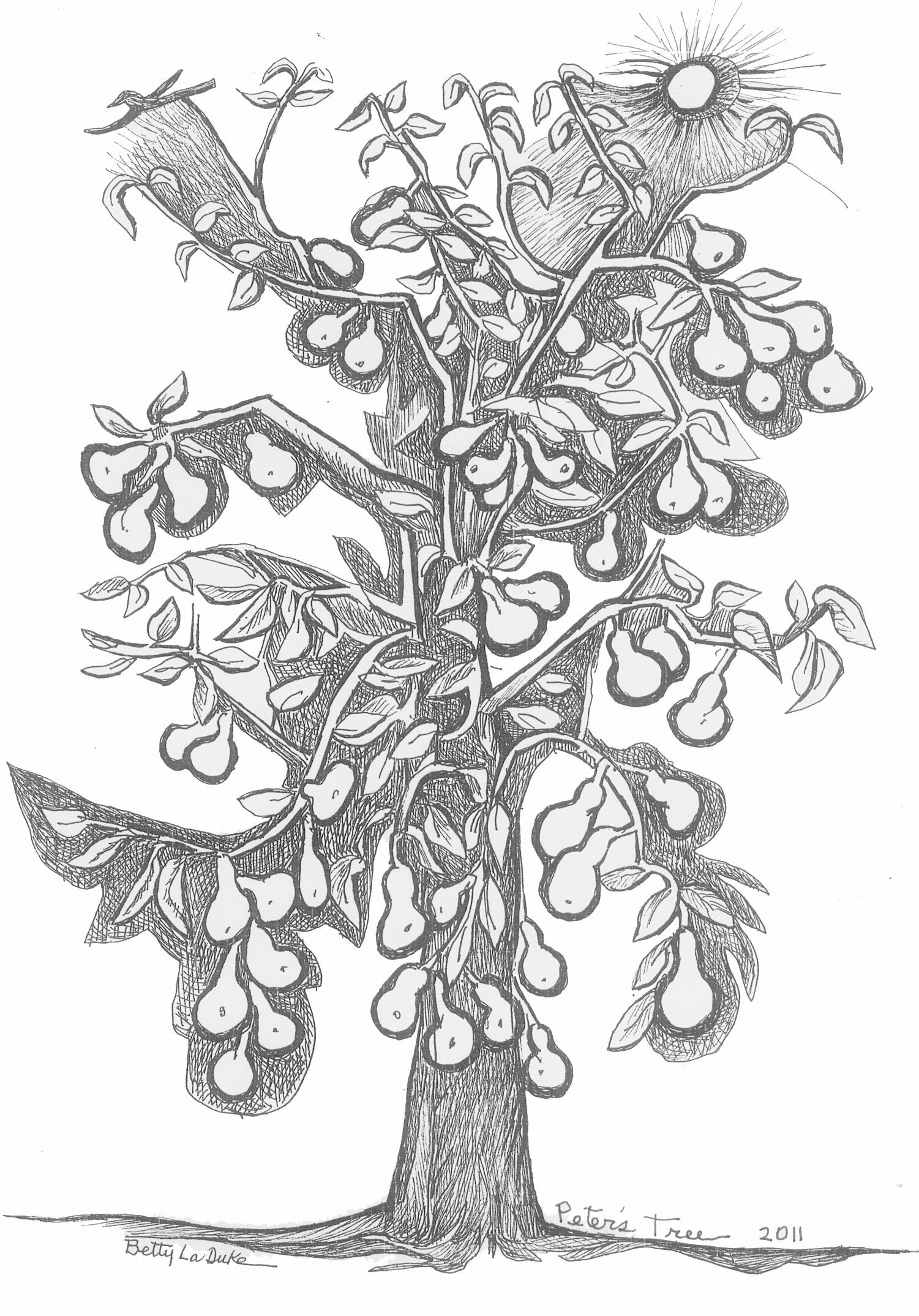 Peter's Tree, drawn by Betty LaDuke in 2011 on the death of her husband, Peter Westigard. Peter's Tree serves as the official logo of the Orchard Pest and Disease Management Conference.