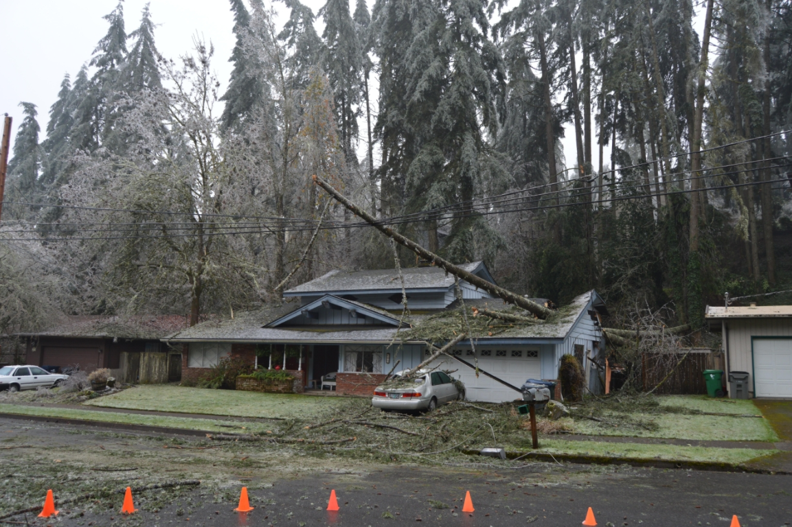 Ruth Root was forced to move out of her home after the December 2016 ice storm. Three trees fell through the roof of the house, and the damage was extensive. She only resumed living in the house this month. (SBG/File)<p></p>