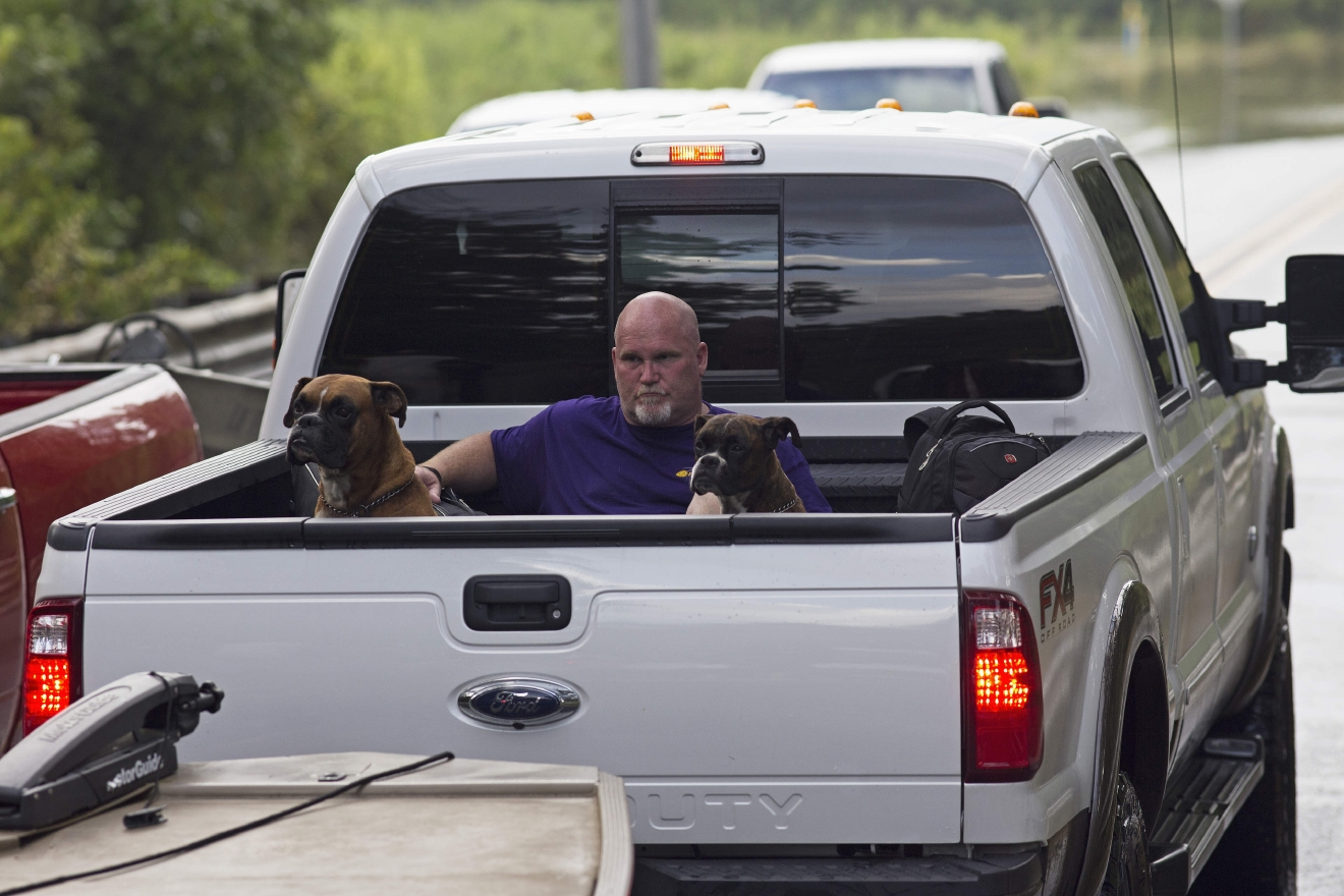 Residents take pets and belonging out of their homes in the flood hit areas around Walker, La., Monday, Aug. 15, 2016. (AP Photo/Max Becherer)