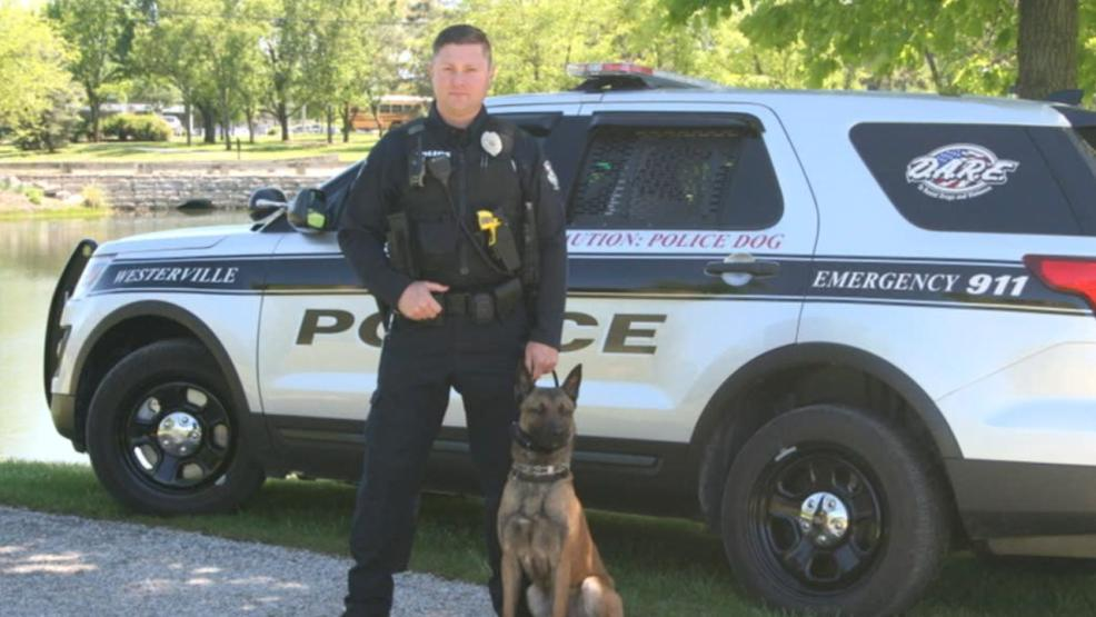 The FOP says it was decided that slain Westerville officer Eric Joering's K9 partner Sam would be retired and will live with his family (Courtesy: Westerville Police)