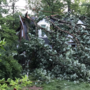 National Weather Service confirms tornado touched down in Md. during severe storms