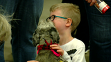 Annual 'My Furry Valentine' held at Sharonville Convention Center