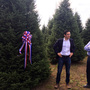 White House Christmas tree selected from Shawano County, Wisc.