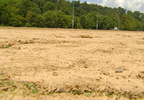 DIRT FIELD_frame_2146.jpg