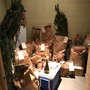 Marijuana plants outgrow evidence room