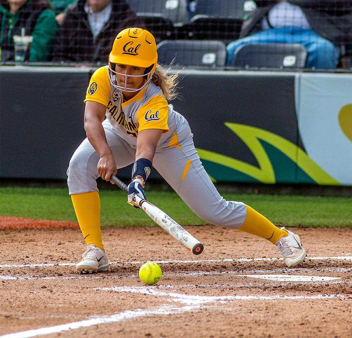 The Golden Bears' Khala Taylor (#33) hits the ball but keeps it close to home base. The Oregon Ducks defeated the Cal Golden Bears 2-1 in the second game of the three game series. Photo by August Frank, Oregon News Lab