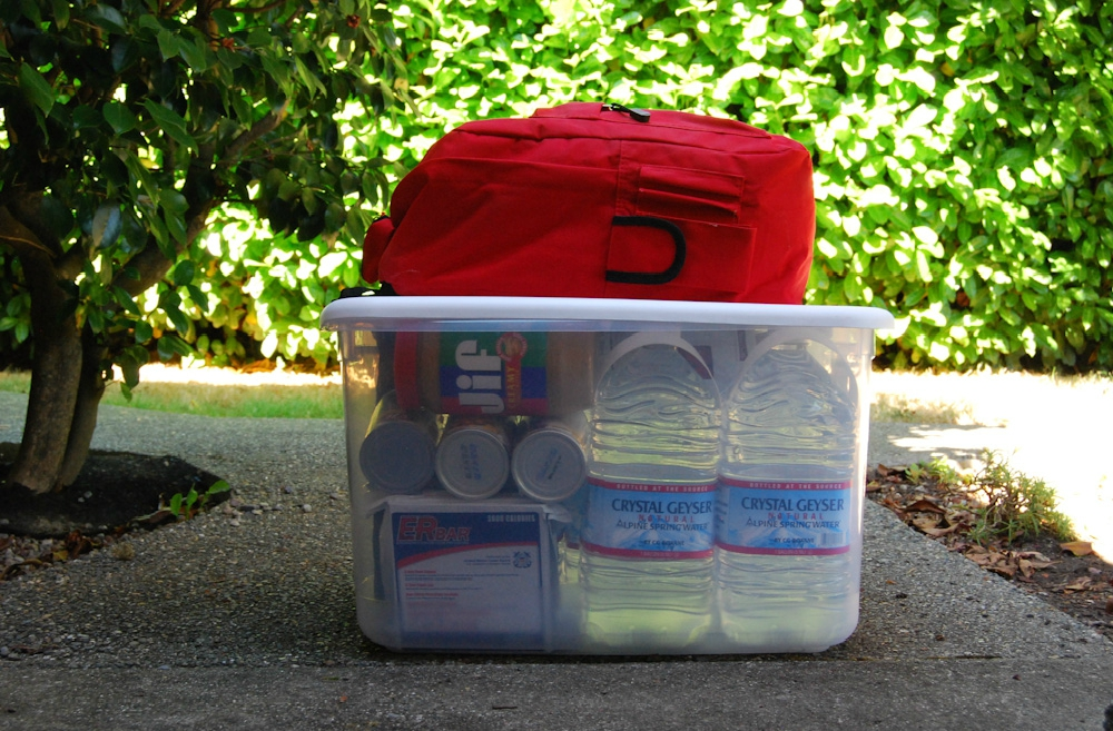 My Emergency Preparedness storage bin is packed and ready for any disaster. I hope I never have to use it. My go bag will be stored with the storage bin in case we need to leave, quickly. (Image: Rebecca Mongrain/Seattle Refined)