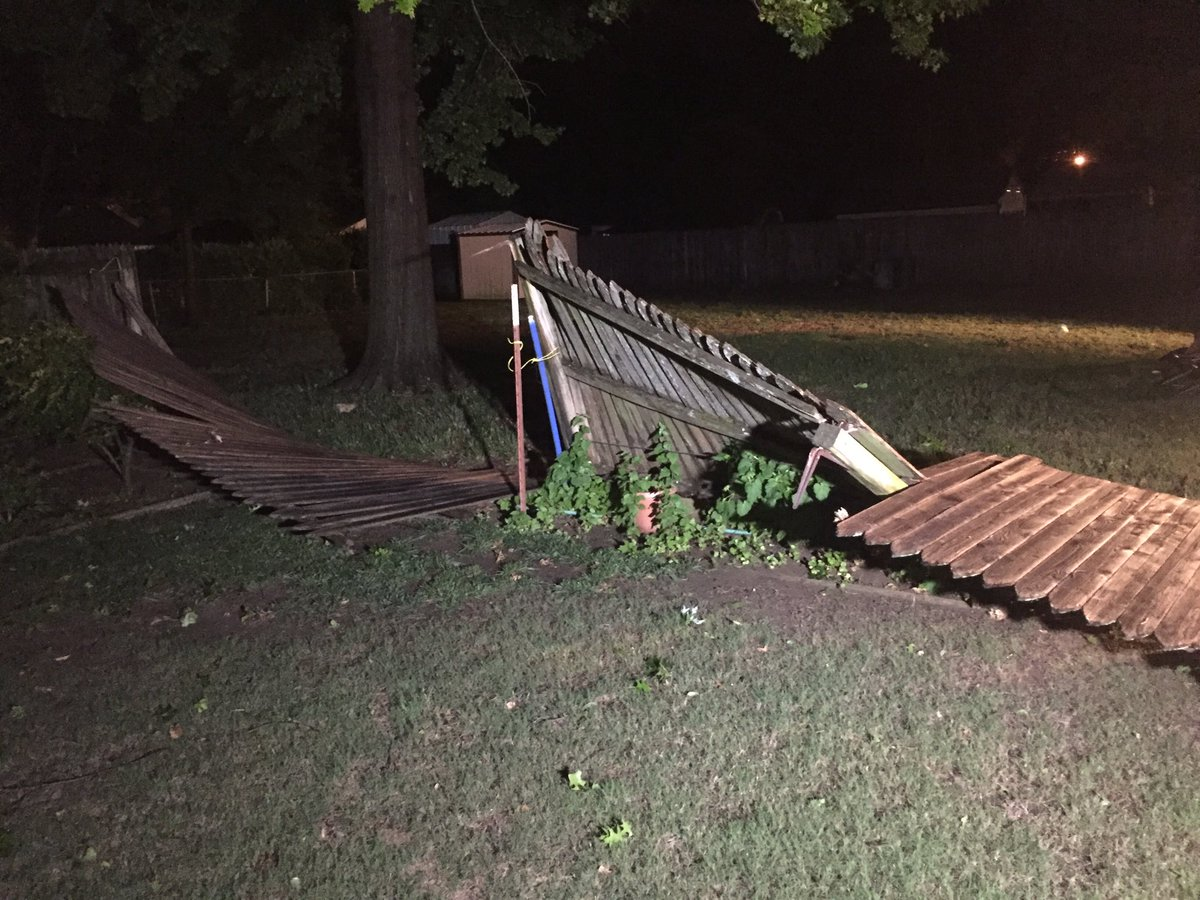 Entire fence line brought down in this Norman backyard (Kyle Hoelting  / KOKH)