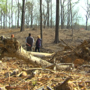 'This has taken years off my life:' Family says they're owed thousands for cut timber.