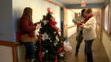 Christmas trees deck the halls at the Champaign County Nursing Home
