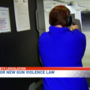 Lawmakers, gun safety advocates push for protective legislation