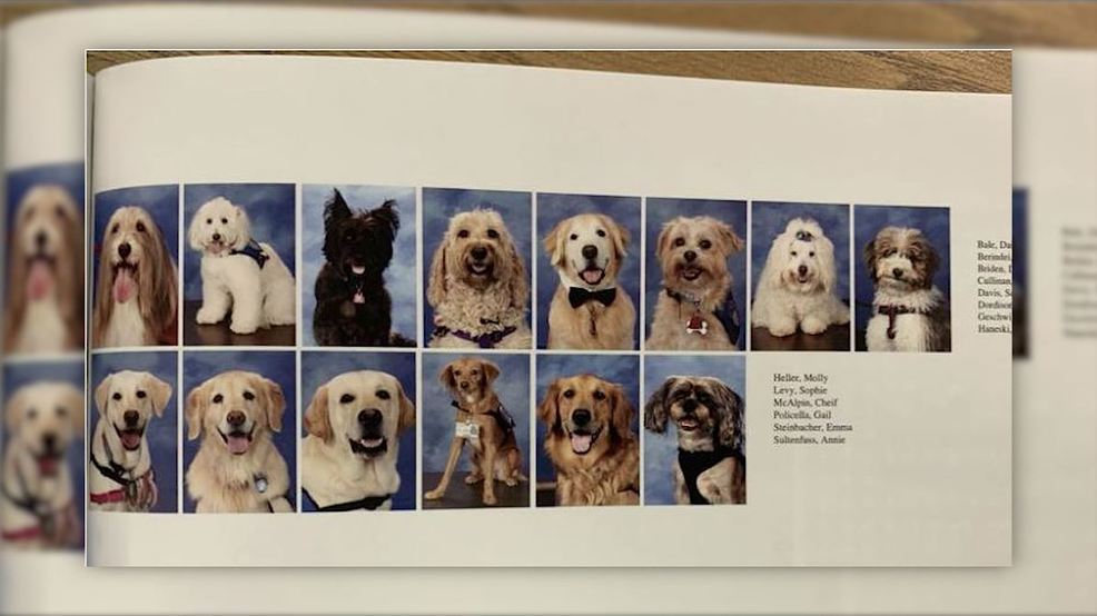 Parkland therapy dogs featured in yearbook 3.JPG