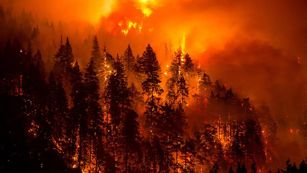 Eagle Creek Fire Grows Spre To Washington Officials Say A High Priority In The Nation Oregonlive