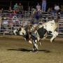 Chase Anderson MDA Memorial Rodeo taking place in Palmyra