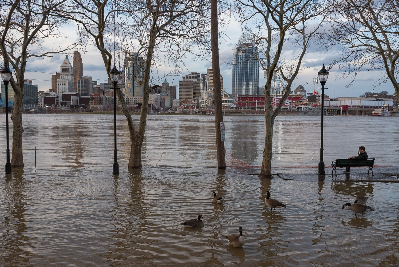 Riverside Drive in Covington is slowly engulfed in river water. / Image: Phil Armstrong, Cincinnati Refined // Published: 2.21.18
