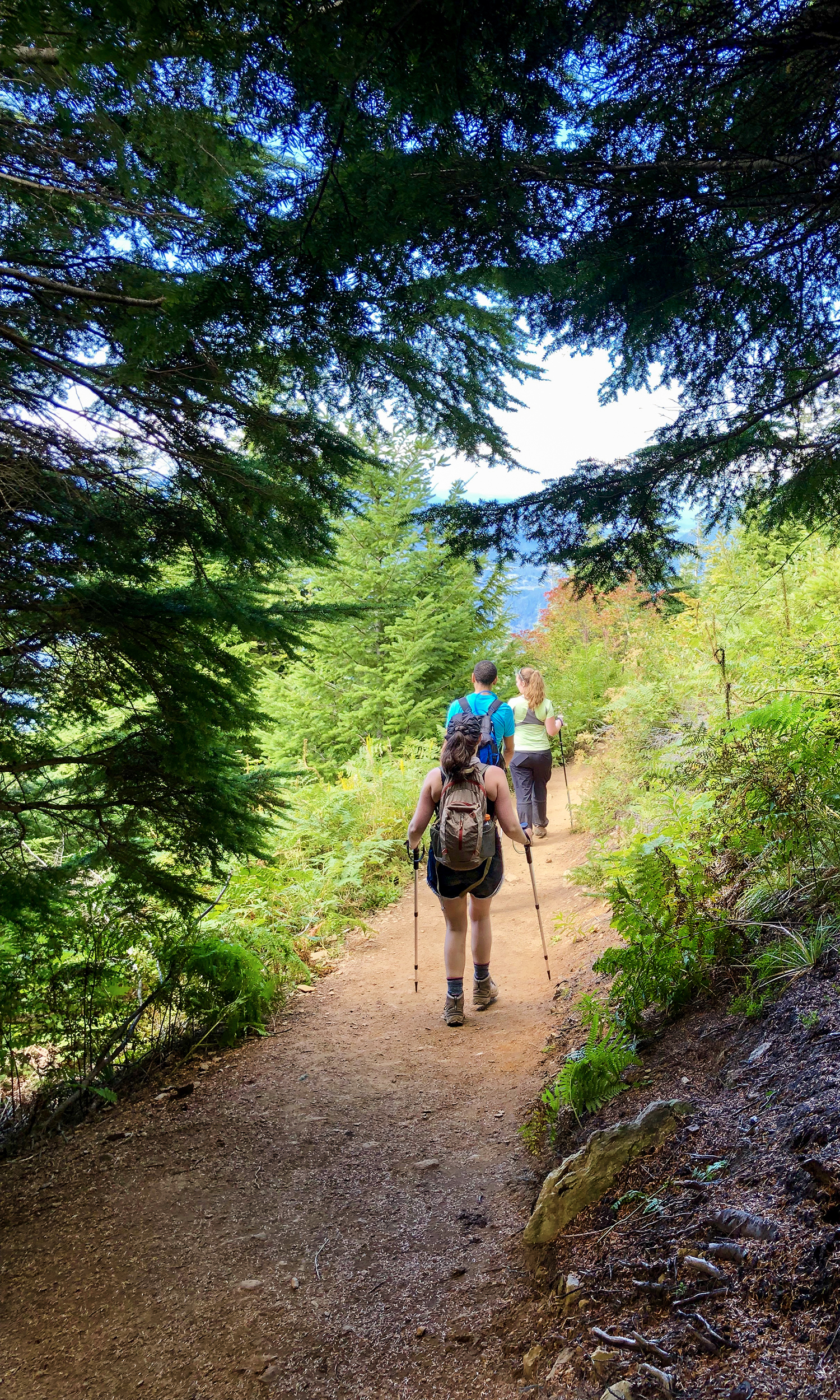 <p>At last, the first flat clearing in miles, and an opportunity to take in the first of many scenic views. This spot is where the Old Trail converges with the New Trail. (Image:{&nbsp;}Rachael A. Jones / Seattle Refined){&nbsp;}</p>