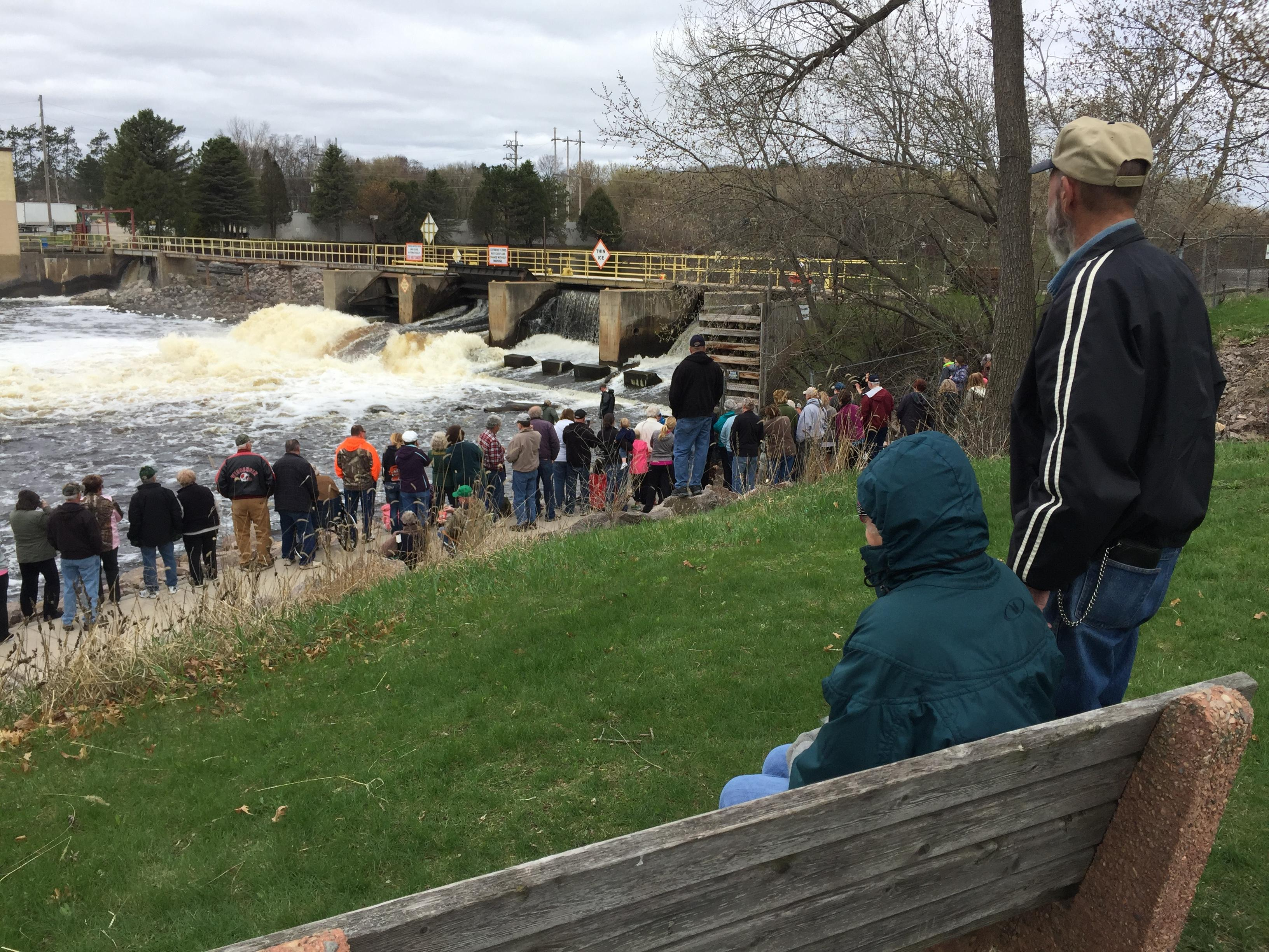 Sturgeon watching at Shawano Dam, April 19, 2017 (WLUK/Eric Peterson)