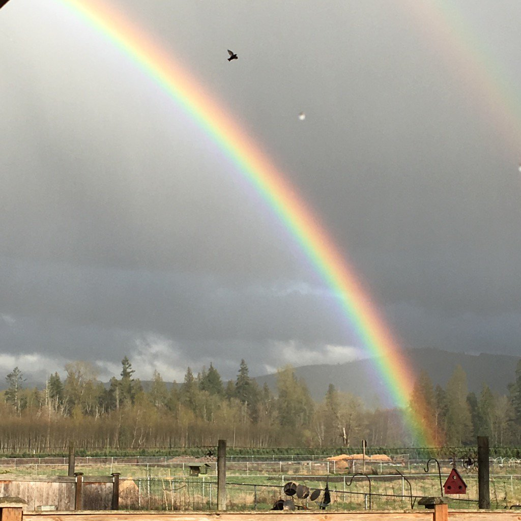 A rainbow is seen in the sky in Orting, Wash. Monday, April 10, 2017. (Photo: Sherri Jay)