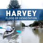 AP investigation: Texas plan to streamline Harvey recovery backfires.
