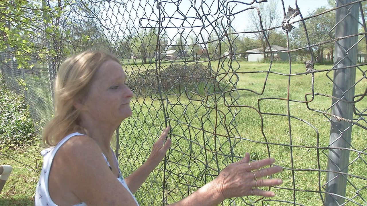 A Redding woman reported her horse was stolen from her backyard late Saturday night and has asked the public for help.