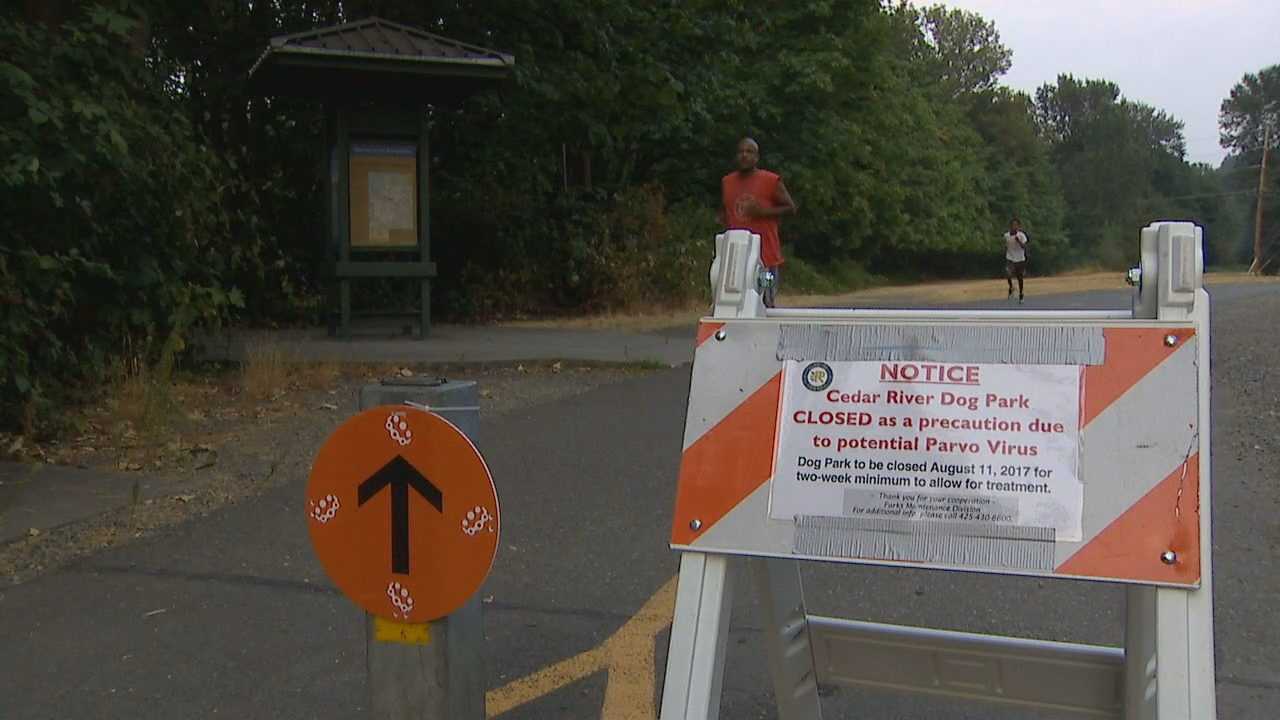 The City of Renton temporarily closed the Cedar River dog park Friday as a precaution after a recent outbreak of the Canine Parvovirus (Parvo) in King County. (Photo: KOMO News)