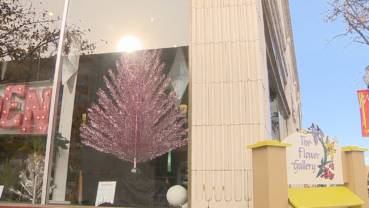 Aluminum Christmas trees on display in Manitowoc | WLUK