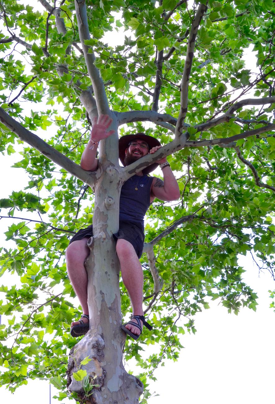 A short-lived tree climbing victory, because no sooner did the guy get to the top than he was told to come down / Image: Leah Zipperstein, Cincinnati Refined // Published: 6.3.18