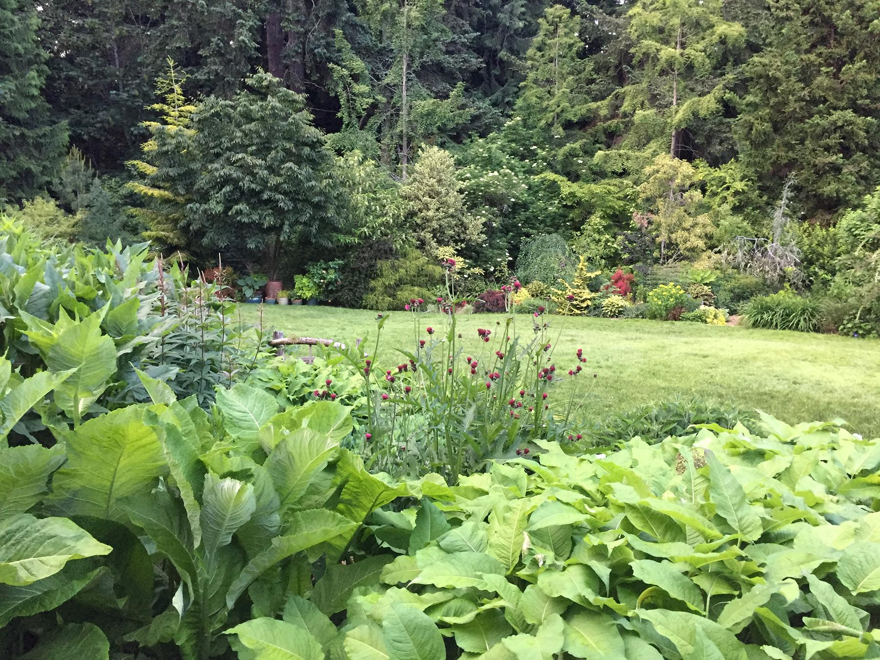 "On Saturday, June 22, you are cordially invited to five private gardens in Bainbridge Island, through the Garden Conservancy Open Days program, 10 a.m. to 4 p.m. The Open Day is rain or shine, and no reservations are required. Admission is $10 per garden; children 12 and under are free. 9786 NE Yaquina Avenue. This two-acre garden has been developed over 25 years. It has quiet green areas, exuberant mixed borders stuffed with unusual plants, a boxwood parterre with a pebble mosaic floor, and an old orchard. The greenhouse was constructed of vintage windows and wood, surrounded by succulents that spend the summer outside. There are outbuildings filled with collectibles, including a ""tiki hut."" The raised vegetable beds have been converted to a cutting garden in a color wheel, with a fountain in the center constructed from old grain augers. (Image courtesy of Stephanie Werskey)."