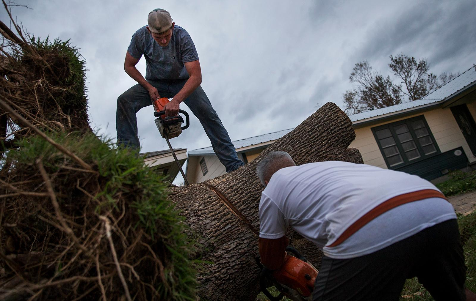 Wyatt Wasicek uses a chainsaw to cut a tree stump in Refugio, Texas, Monday, Aug. 28, 2017. (Nick Wagner/Austin American-Statesman via AP)