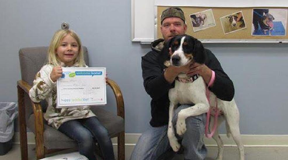 Casi todo el Condado de Clare Refugio de Animales los animales adoptados durante ... - UpNorthLive.com 1