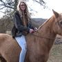 A Shelby County woman takes a horse close to death and gives it a Triple Crown life