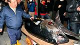 Giant 600 pound tuna sells for record $3 million at Tokyo auction