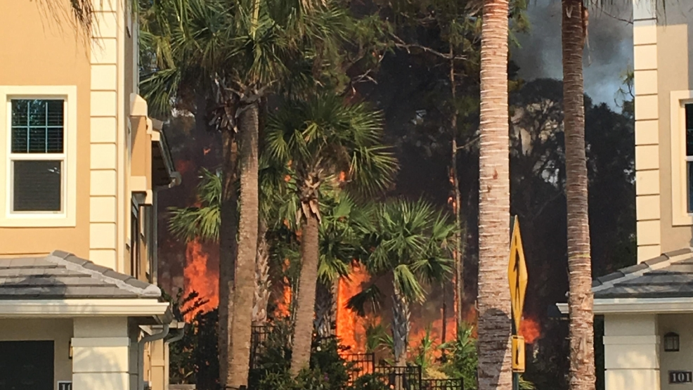 Fire rescue crews battle brush fire in palm beach gardens wpec for Fire in palm beach gardens today