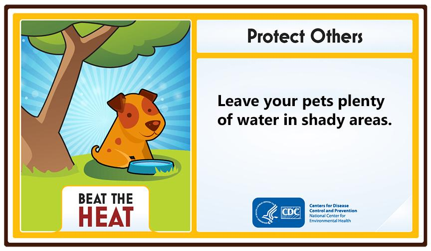 Advice from the Centers for Disease Control and Prevention