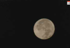 moon pic.PNG