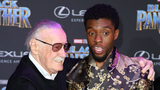 Chadwick Boseman wants 'Black Panther' to get Oscar for best picture