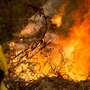 New fires break out in California as wine country fires dim