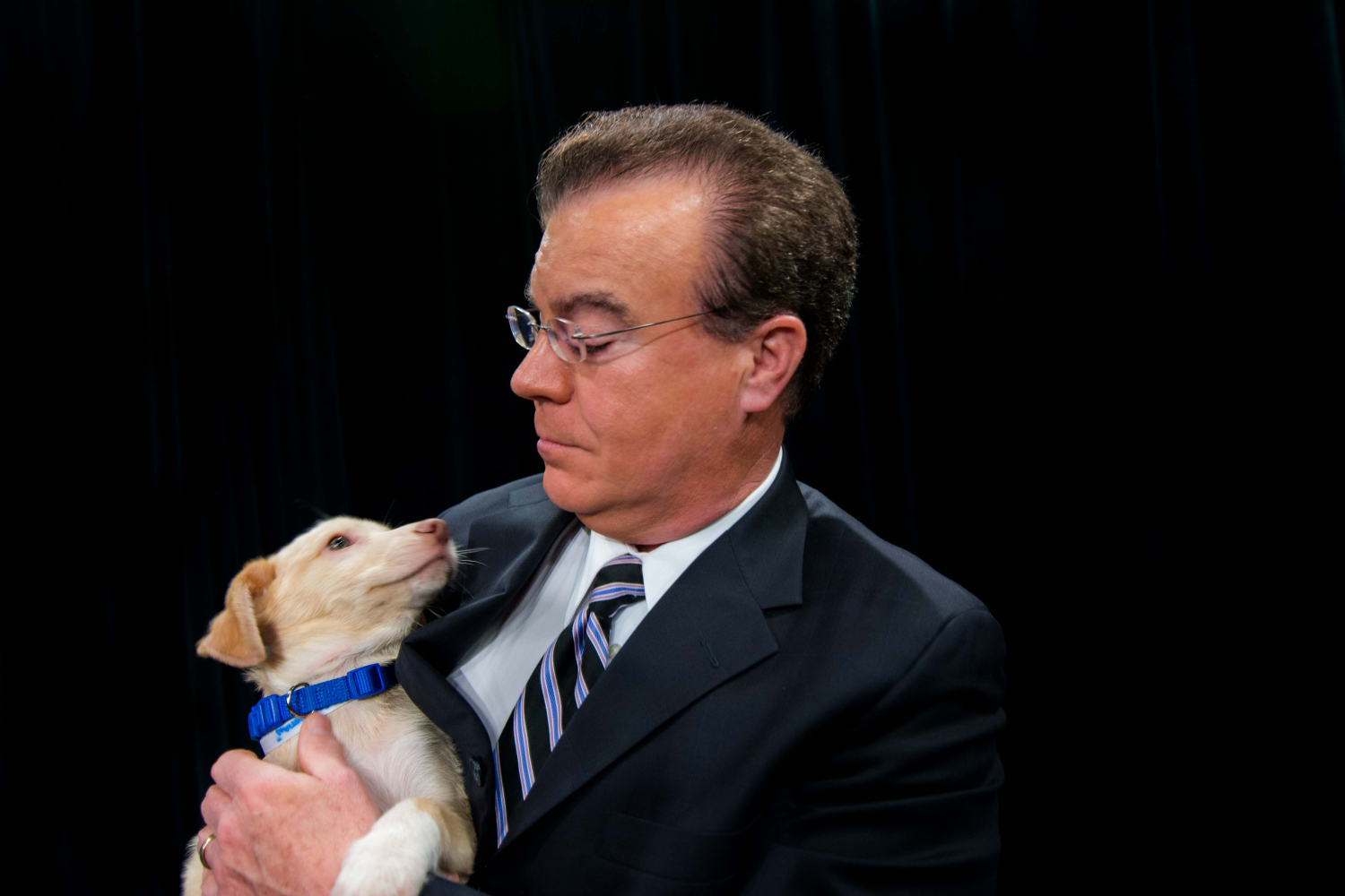 "And here are a few more for good measure. These aren't ""office dogs,"" per se, they are more like office regulars. SPCA stops by Local 12 every Tuesday and Saturday. Here's Sebastian, with Rob Braun. / Image: McKenzie Graham/ Image: McKenzie Graham"
