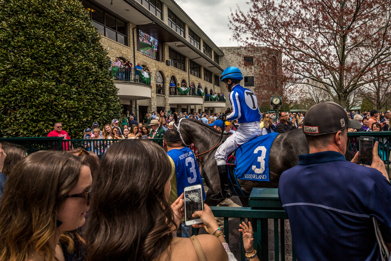 Attendees watch jockeys and horses gather in the paddock area of Keeneland / Image courtesy of Catherine Viox // Published:{ }4.12.19
