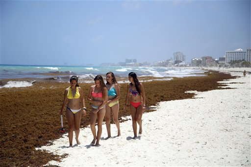 Tourists walk past large quantities of seaweed piling up on the beach in the Mexican resort city of Cancun, Mexico.