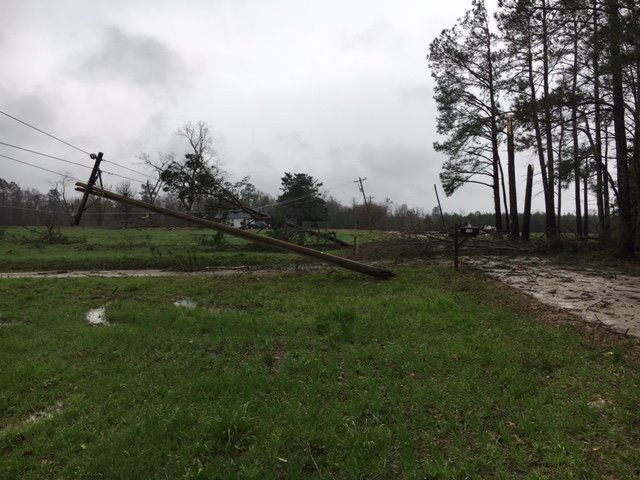 Trees and power lines down after a strong storm moved through the area Wednesday afternoon. (Horry Electric)
