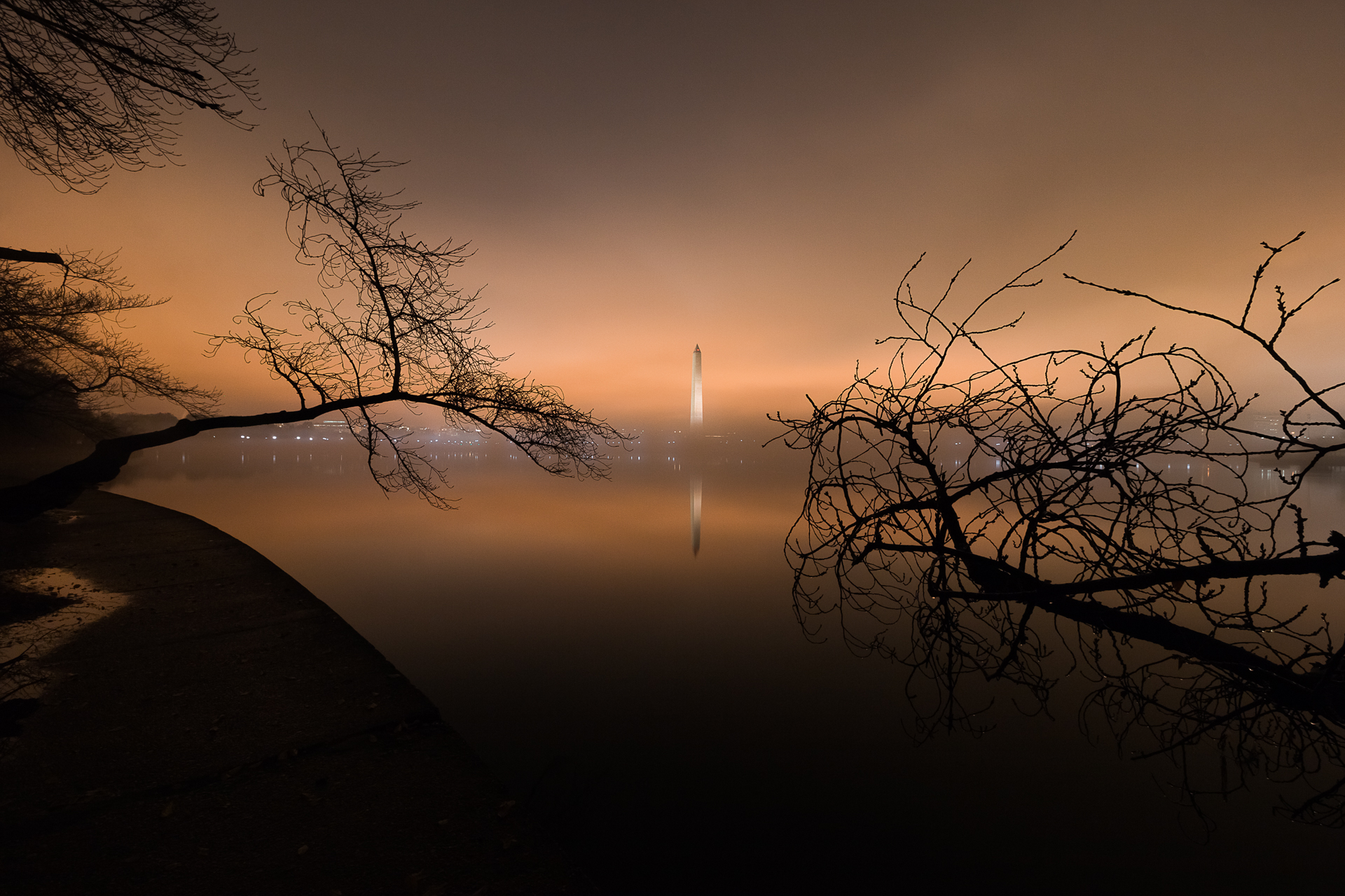 The Dark and Eerie – A foggy night on the Tidal Basin{&nbsp;}(Image: Zack Lewkowicz)<p></p>