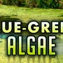Southeastern Nebraska lake gets toxic algae health alert